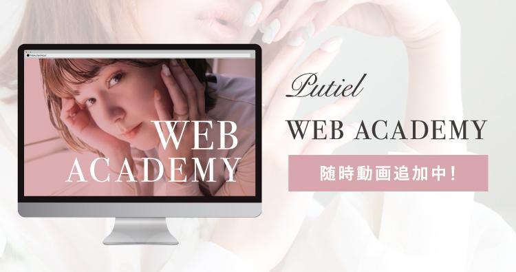 WEB ACADEMY